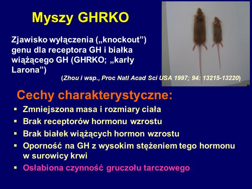 Cechy charakterystyczne:  Zmniejszona masa i rozmiary ciała  Brak receptorów hormonu wzrostu  Brak białek wiążących hormon wzrostu  Oporność na GH