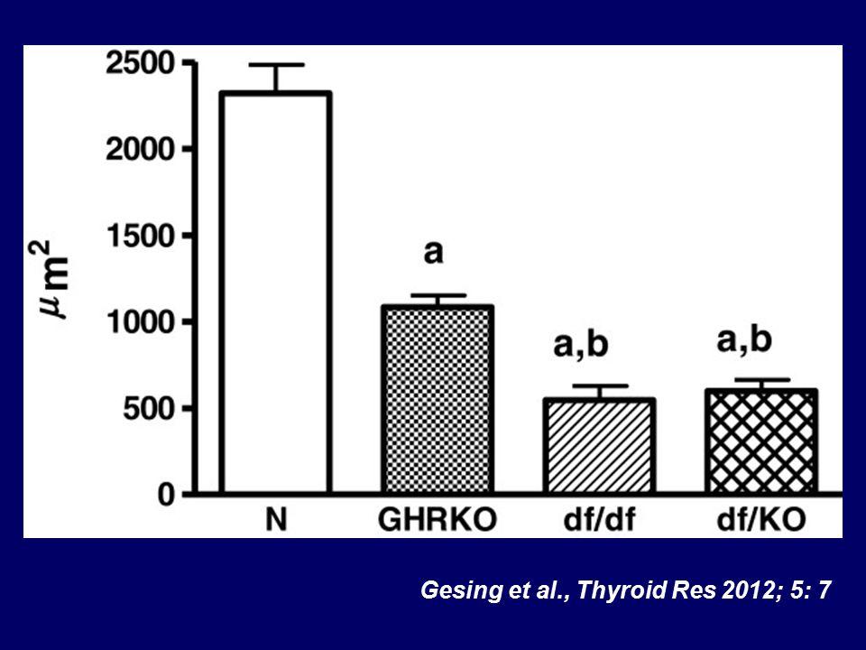 Gesing et al., Thyroid Res 2012; 5: 7