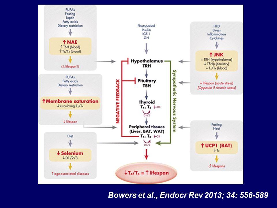 Bowers et al., Endocr Rev 2013; 34: 556-589