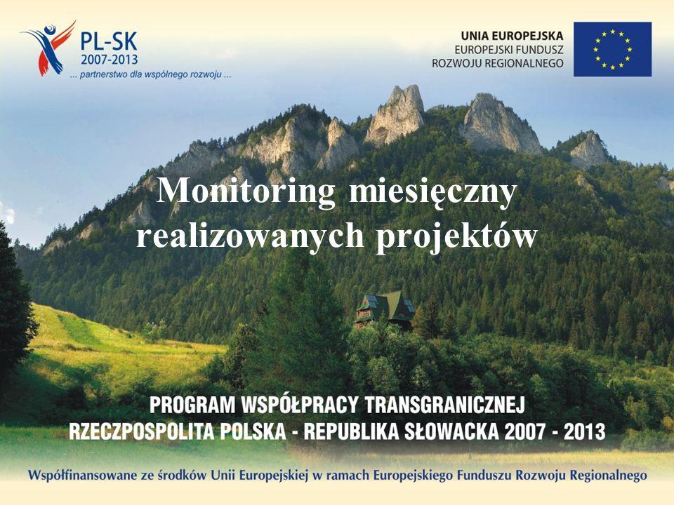 Monitoring miesięczny realizowanych projektów