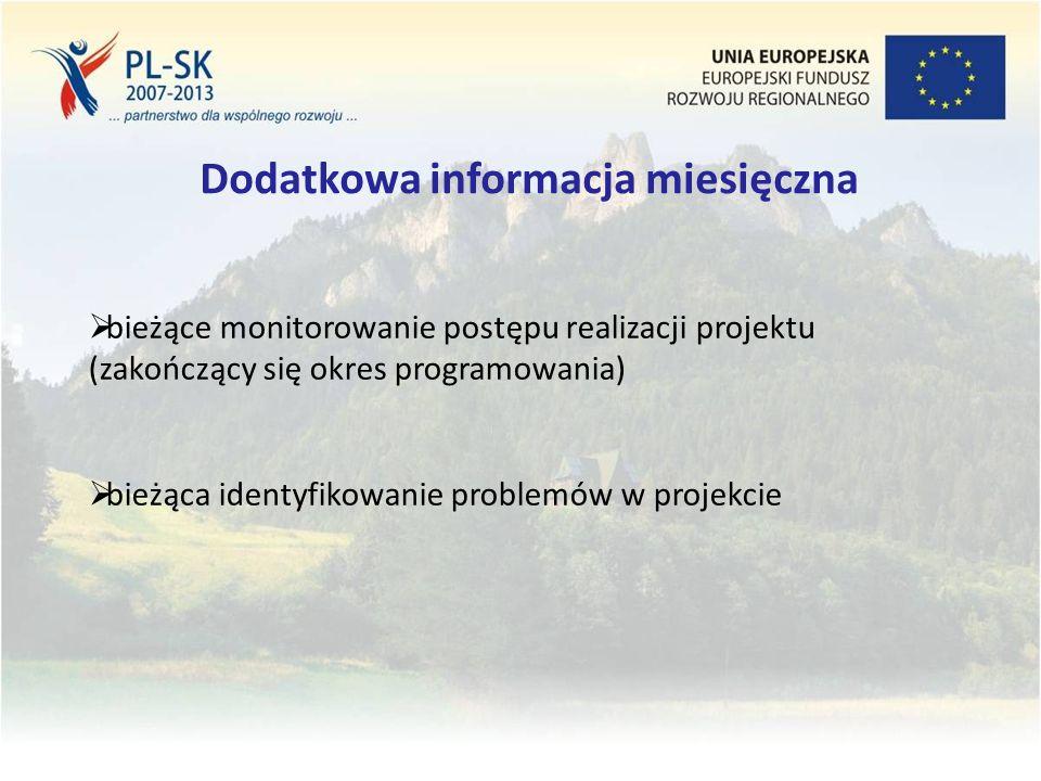 Stopka (tekst, tekst, tekst....) 13 Dodatkowa informacja miesięczna  bieżące monitorowanie postępu realizacji projektu (zakończący się okres programowania)  bieżąca identyfikowanie problemów w projekcie