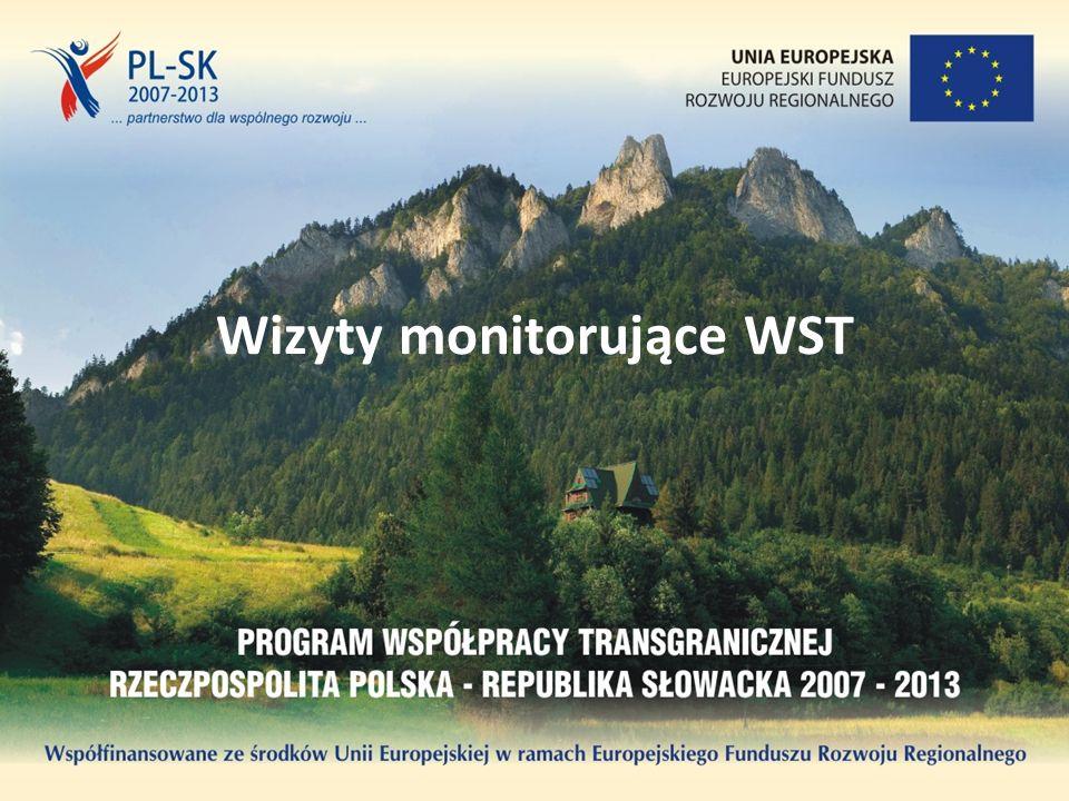 Wizyty monitorujące WST