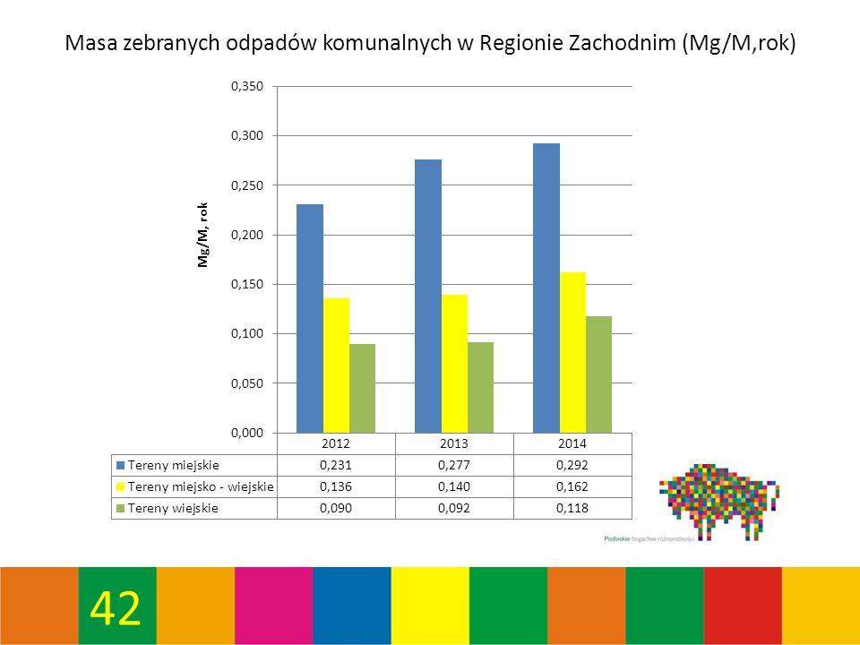 42 Masa zebranych odpadów komunalnych w Regionie Zachodnim (Mg/M,rok)