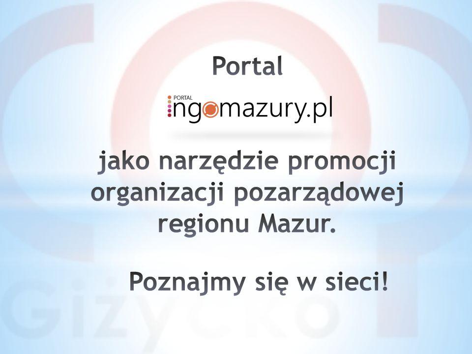 Jednym z największych problemów związanych z promocją organizacji pozarządowej jest wyasygnowanie środków na zaprojektowanie, hosting, domenę i aktualizowanie strony internetowej.
