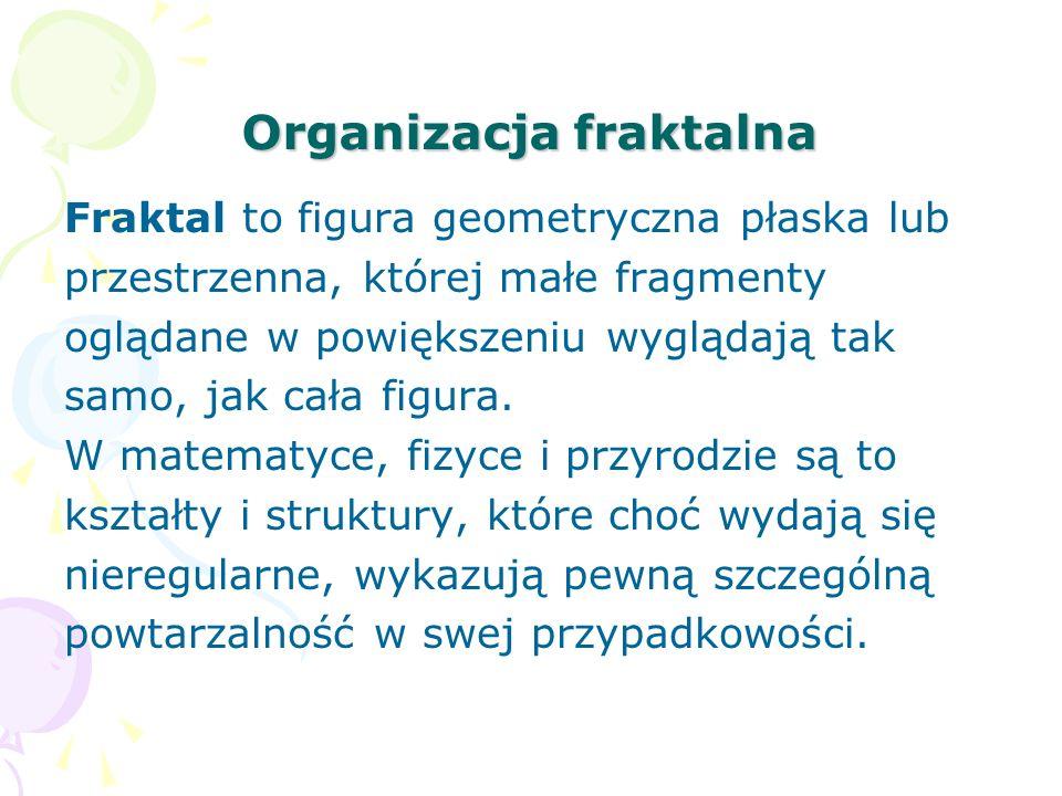 Organizacja fraktalna Fraktal to figura geometryczna płaska lub przestrzenna, której małe fragmenty oglądane w powiększeniu wyglądają tak samo, jak cała figura.