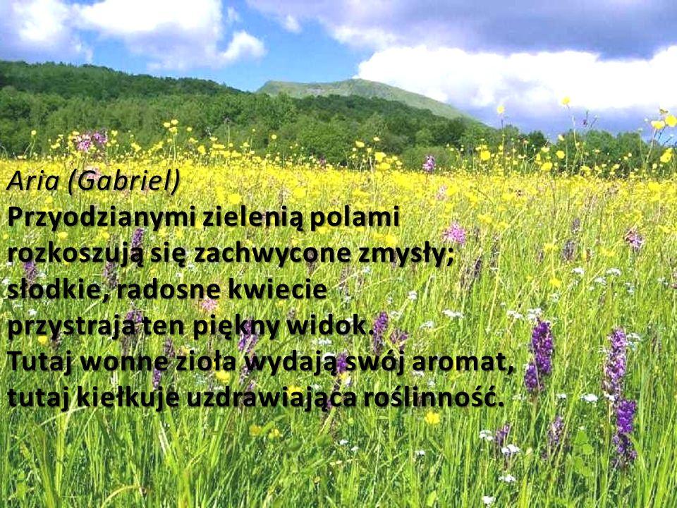 Aria (Gabriel) Przyodzianymi zielenią polami rozkoszują się zachwycone zmysły; słodkie, radosne kwiecie przystraja ten piękny widok.