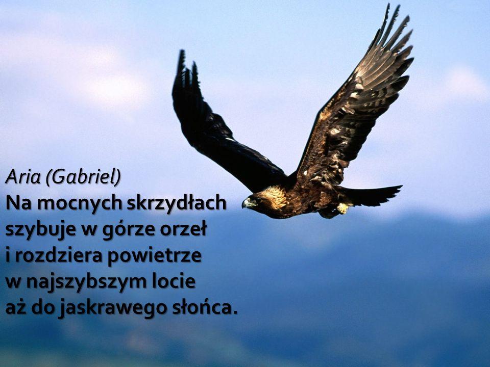 Aria (Gabriel) Na mocnych skrzydłach szybuje w górze orzeł i rozdziera powietrze w najszybszym locie aż do jaskrawego słońca.