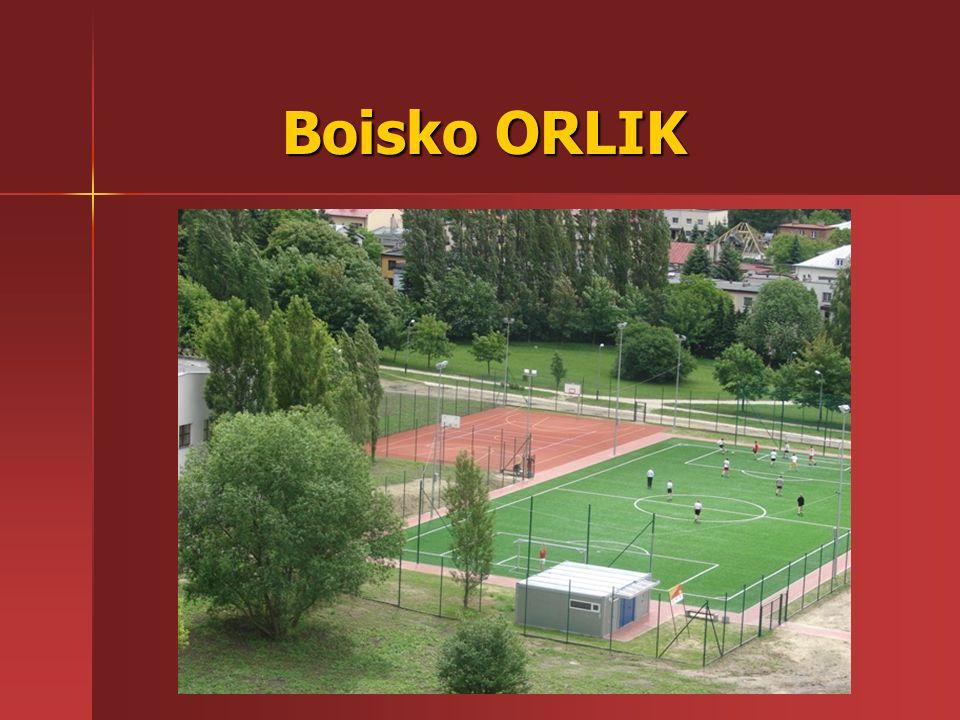 Boisko ORLIK