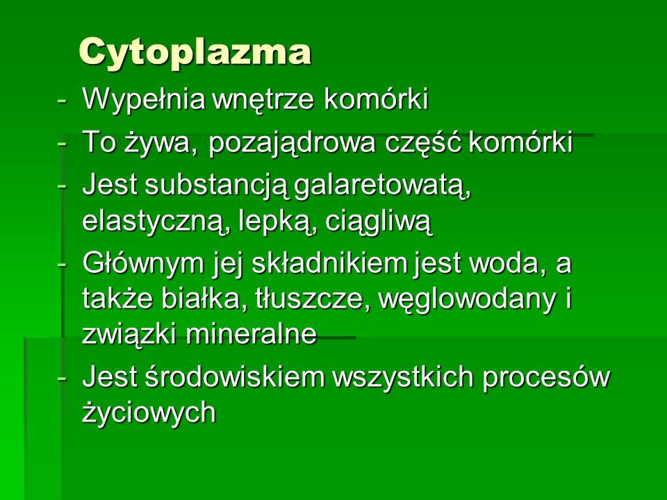 Cytoplazma -Wypełnia wnętrze komórki -To żywa, pozajądrowa część komórki -Jest substancją galaretowatą, elastyczną, lepką, ciągliwą -Głównym jej skład
