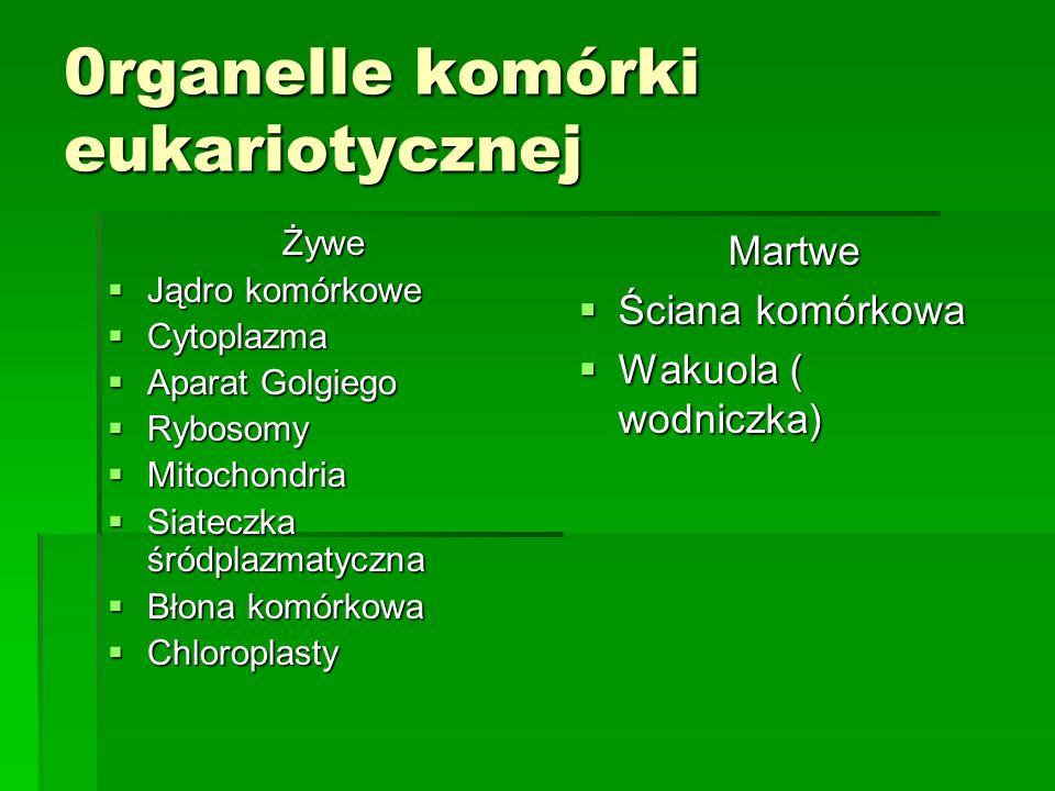 0rganelle komórki eukariotycznej Żywe  Jądro komórkowe  Cytoplazma  Aparat Golgiego  Rybosomy  Mitochondria  Siateczka śródplazmatyczna  Błona