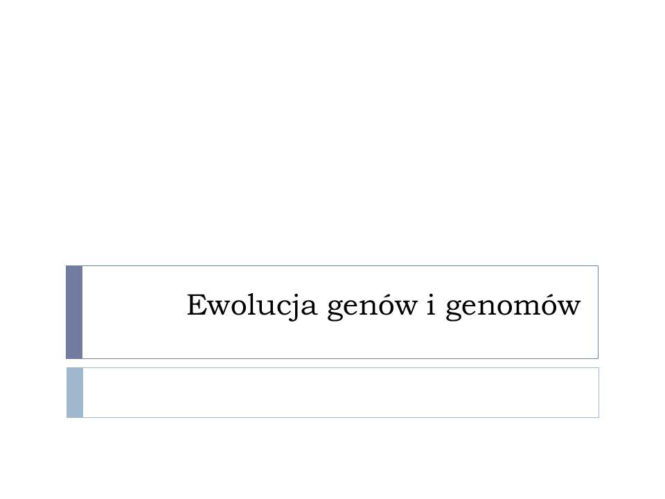 Ewolucja genów i genomów