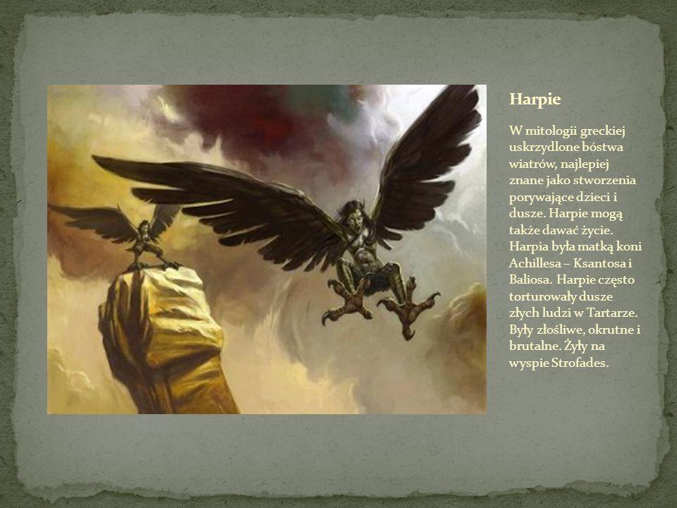 W mitologii greckiej uskrzydlone bóstwa wiatrów, najlepiej znane jako stworzenia porywające dzieci i dusze.