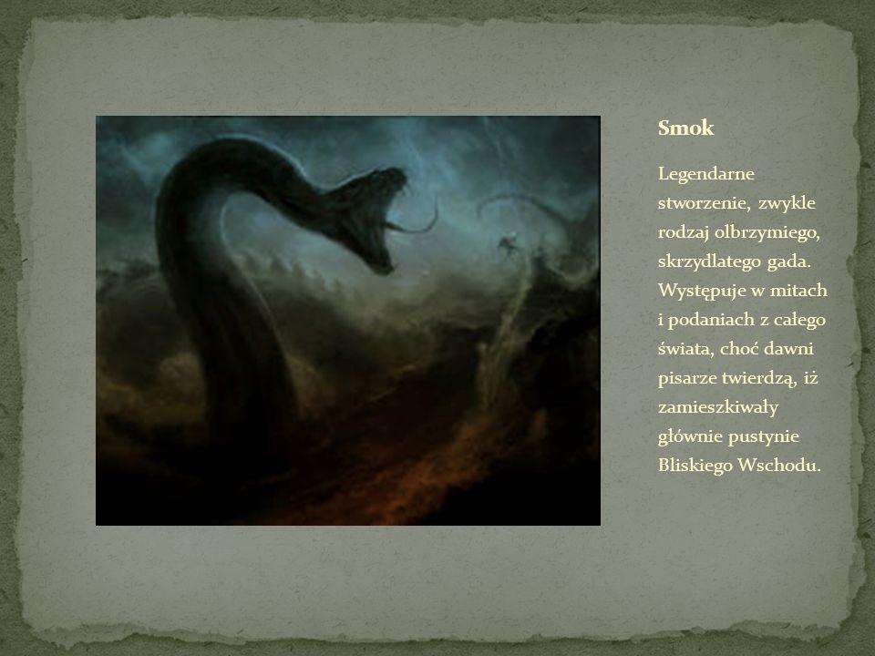 Legendarne stworzenie, zwykle rodzaj olbrzymiego, skrzydlatego gada.