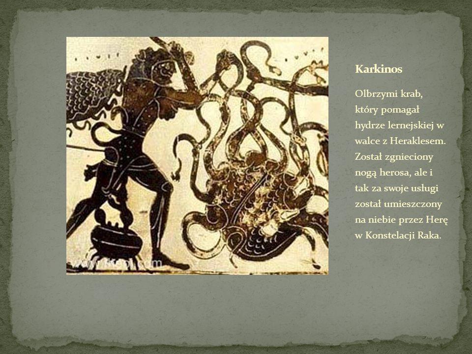 Olbrzymi krab, który pomagał hydrze lernejskiej w walce z Heraklesem.