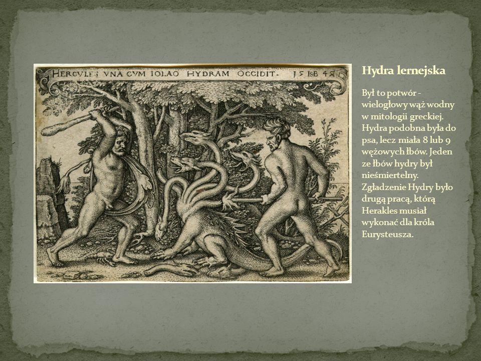 Był to potwór w mitologii greckiej, o ciele w połowie młodej kobiety, w połowie cętkowanego węża.