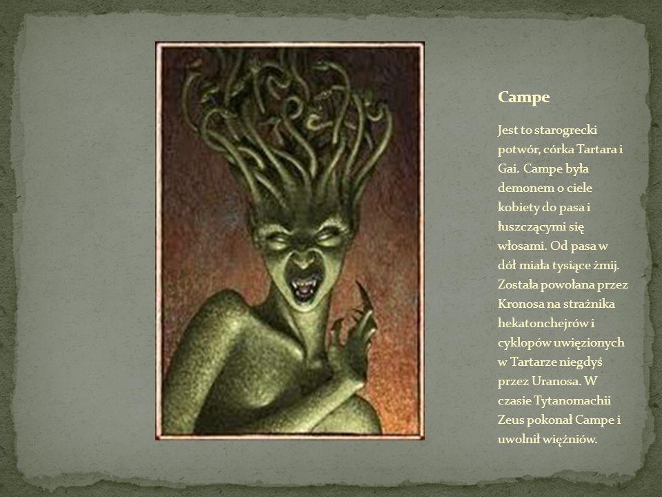Jest to starogrecki potwór, córka Tartara i Gai.