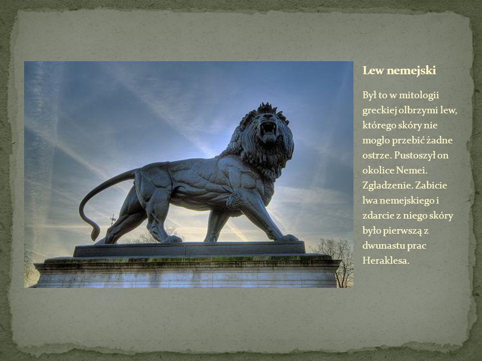Był to w mitologii greckiej olbrzymi lew, którego skóry nie mogło przebić żadne ostrze.