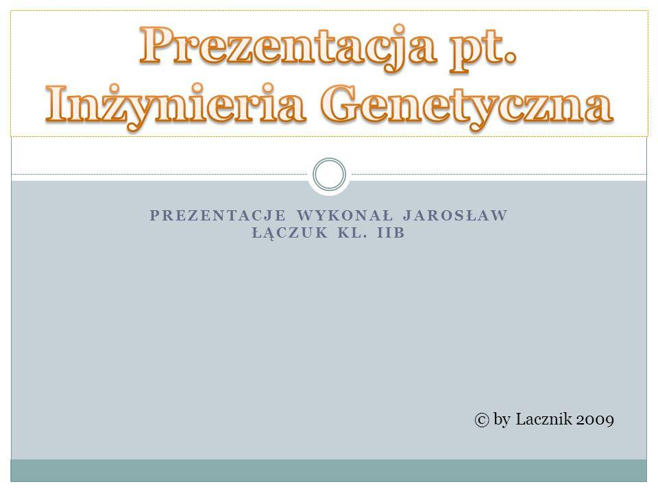 PREZENTACJE WYKONAŁ JAROSŁAW ŁĄCZUK KL. IIB © by Lacznik 2009