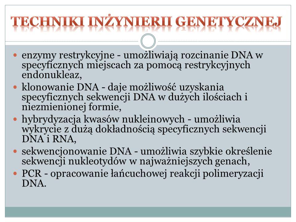 enzymy restrykcyjne - umożliwiają rozcinanie DNA w specyficznych miejscach za pomocą restrykcyjnych endonukleaz, klonowanie DNA - daje możliwość uzyskania specyficznych sekwencji DNA w dużych ilościach i niezmienionej formie, hybrydyzacja kwasów nukleinowych - umożliwia wykrycie z dużą dokładnością specyficznych sekwencji DNA i RNA, sekwencjonowanie DNA - umożliwia szybkie określenie sekwencji nukleotydów w najważniejszych genach, PCR - opracowanie łańcuchowej reakcji polimeryzacji DNA.
