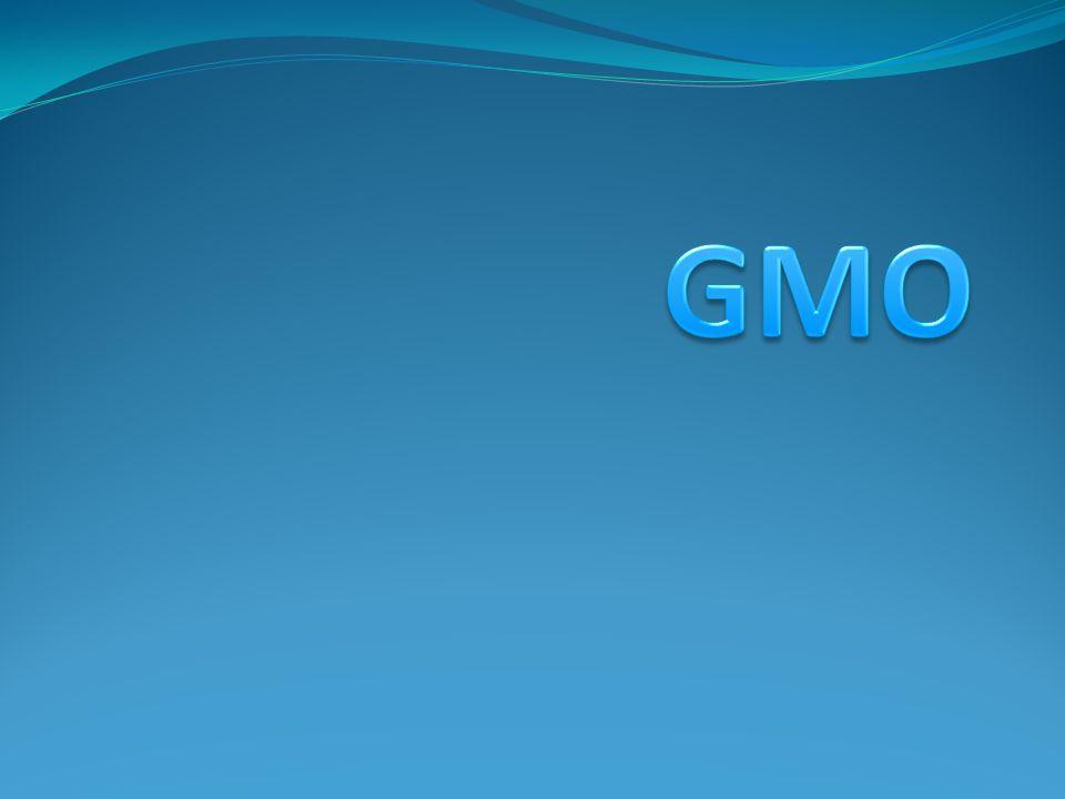 Aktualności z kategorii Organizmy transgeniczne: *Wykryto genetycznie modyfikowany ryż LL Rice 601 *W Polsce można opracowywać nowe, rodzime rośliny modyfikowane genetycznie *GMO - na biopaliwa, pasze i dla przemysłu spożywczego *Pierwszy lek od zmodyfikowanych genetycznie kóz *Zakaz uprawy GMO w Polsce *Rząd przeciwny GMO *Powierzchnia upraw GMO na świecie stale wzrasta *Transgeniczna kukurydza na niedobór żelaza *Transgeniczny pomidor odporny na suszę *Transgeniczna świnia dawcą organów dla ludzi.