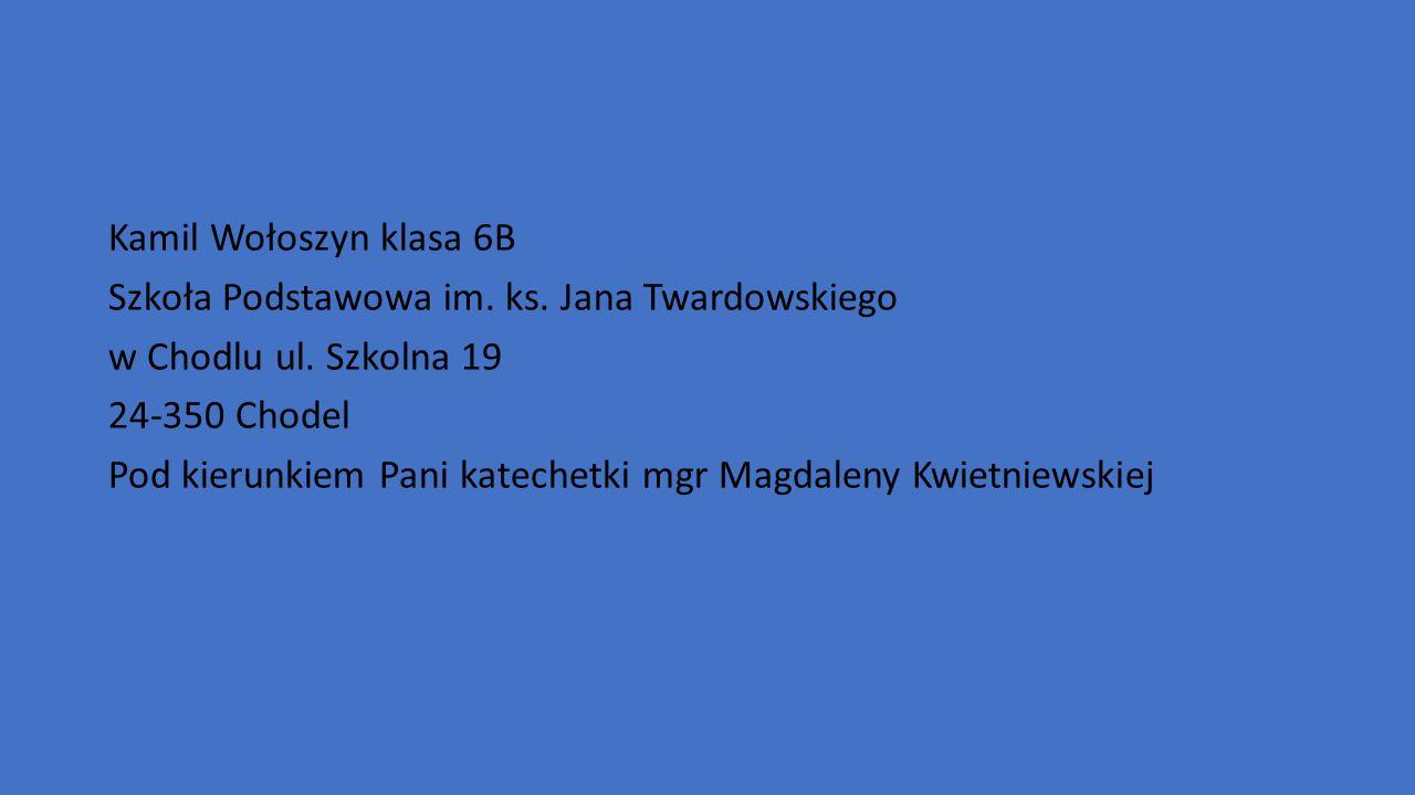 Kamil Wołoszyn klasa 6B Szkoła Podstawowa im. ks.