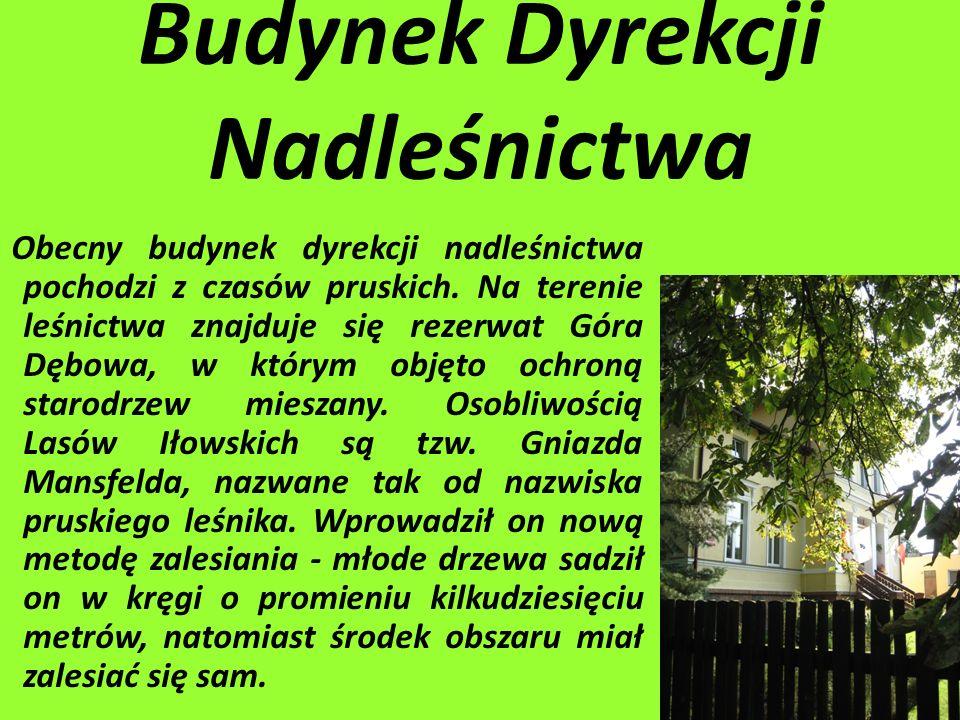 Wykonały : Weronika Pętlicka Marta Chylińska Zofia Wtulich