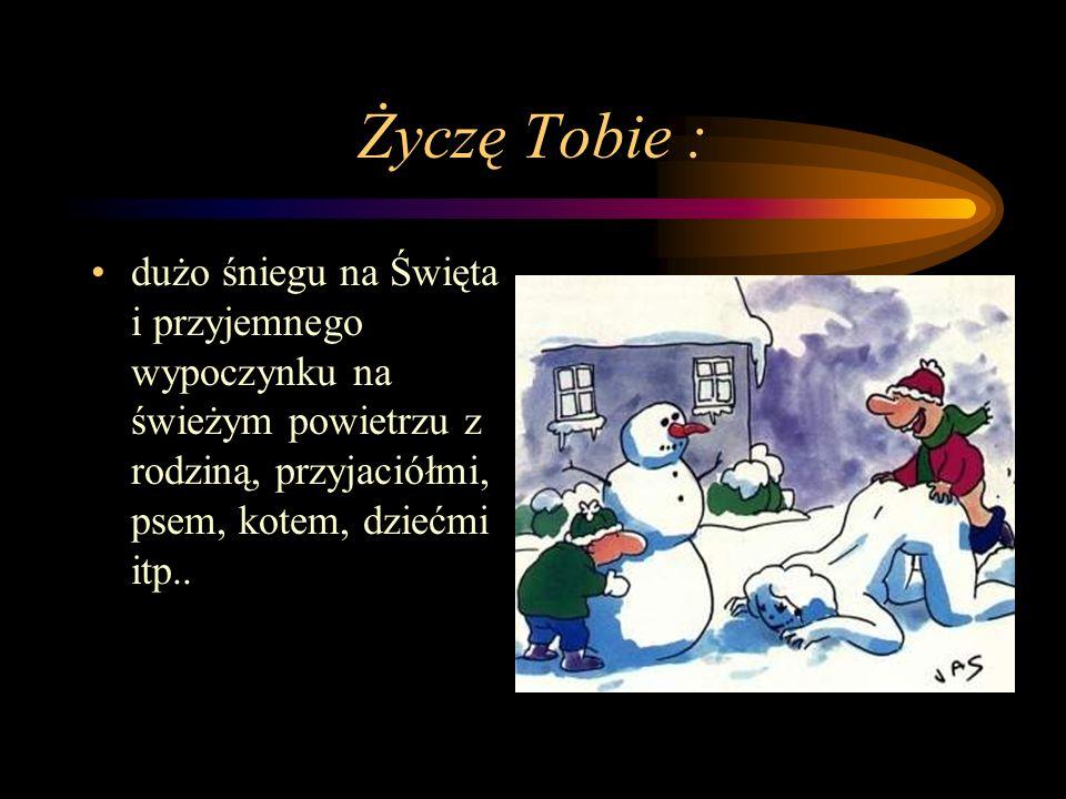 Życzę Tobie : dużo śniegu na Święta i przyjemnego wypoczynku na świeżym powietrzu z rodziną, przyjaciółmi, psem, kotem, dziećmi itp...