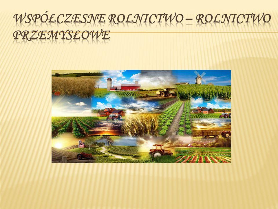 Współczesne rolnictwo to rolnictwo przemysłowe nastawione na maksymalną wydajność i maksymalny zysk.