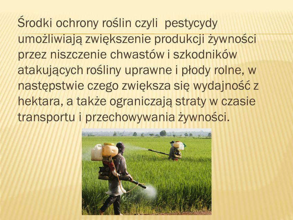 Środki ochrony roślin czyli pestycydy umożliwiają zwiększenie produkcji żywności przez niszczenie chwastów i szkodników atakujących rośliny uprawne i