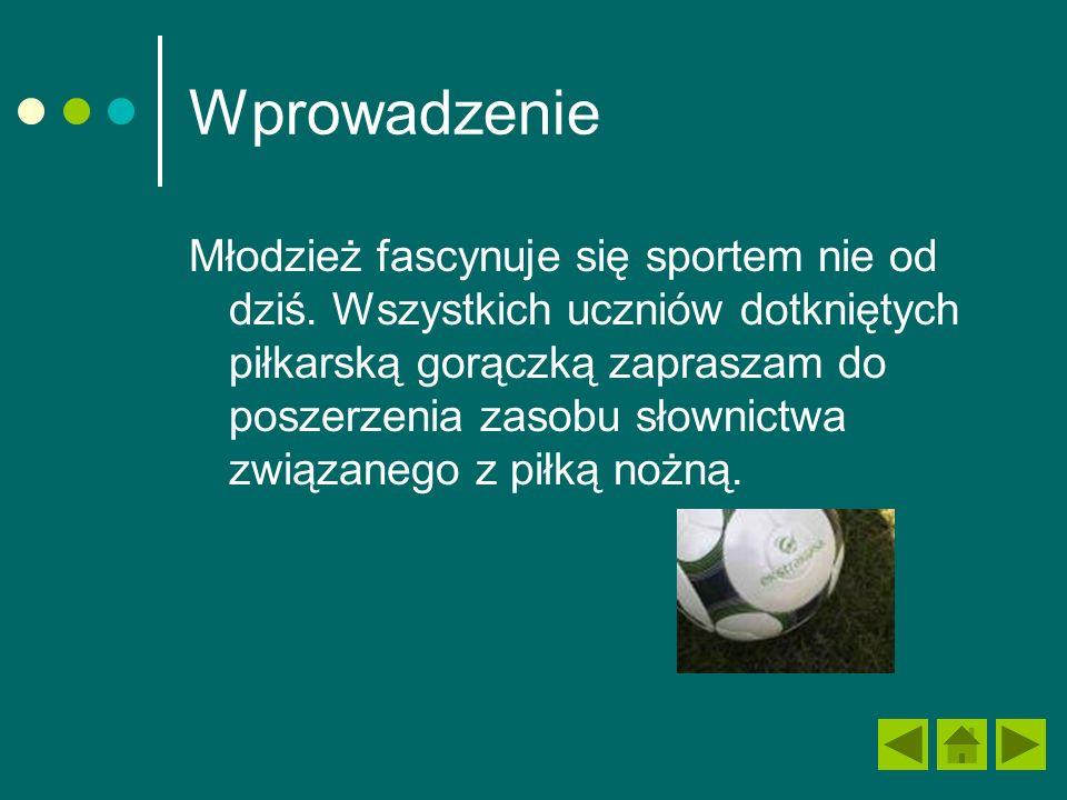 Wprowadzenie Młodzież fascynuje się sportem nie od dziś.