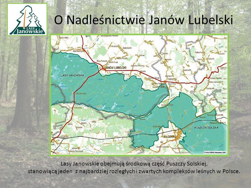 O Nadleśnictwie Janów Lubelski Lasy Janowskie obejmują środkową część Puszczy Solskiej, stanowiącą jeden z najbardziej rozległych i zwartych kompleksów leśnych w Polsce.