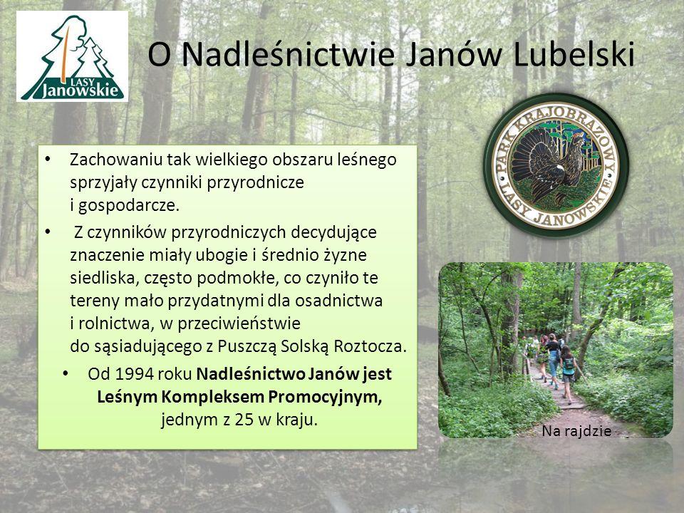 O Nadleśnictwie Janów Lubelski Zachowaniu tak wielkiego obszaru leśnego sprzyjały czynniki przyrodnicze i gospodarcze.
