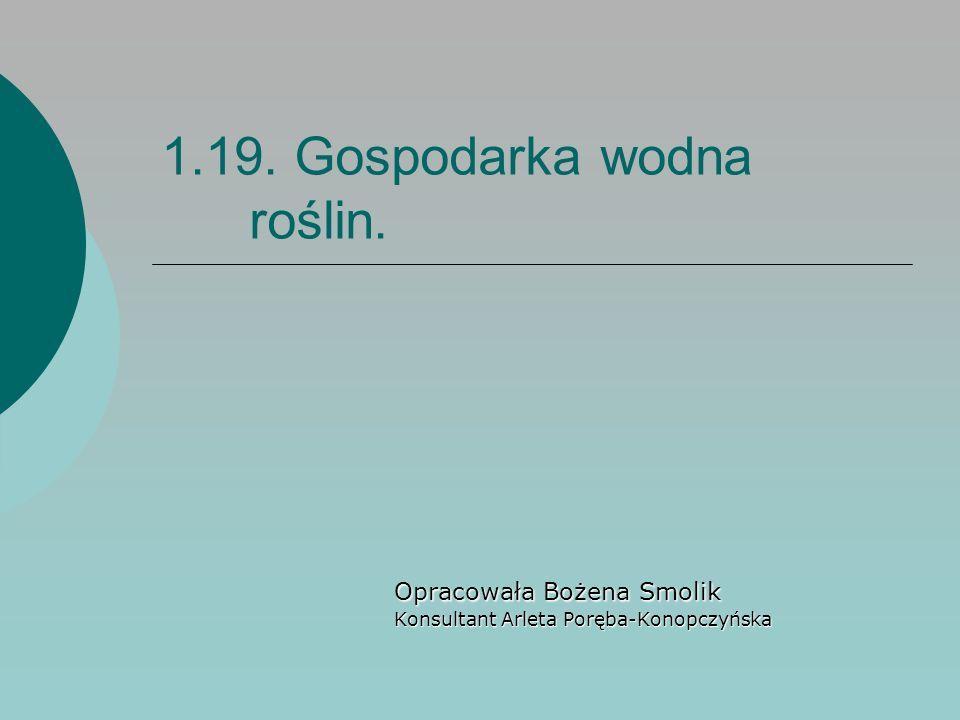 1.19. Gospodarka wodna roślin. Opracowała Bożena Smolik Konsultant Arleta Poręba-Konopczyńska
