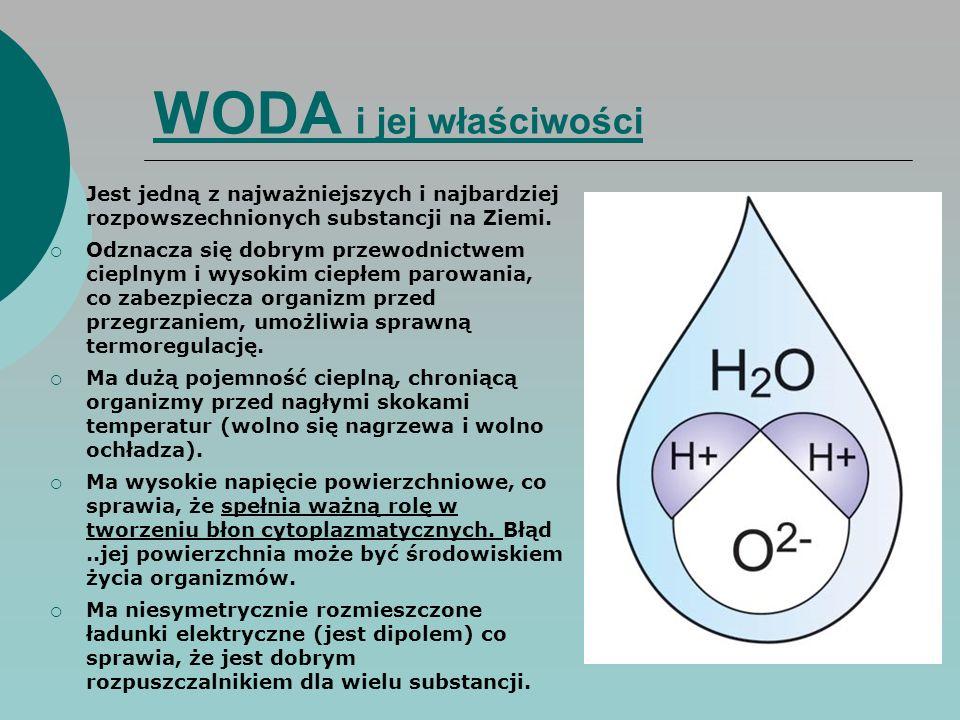 WODA i jej właściwości  Jest jedną z najważniejszych i najbardziej rozpowszechnionych substancji na Ziemi.