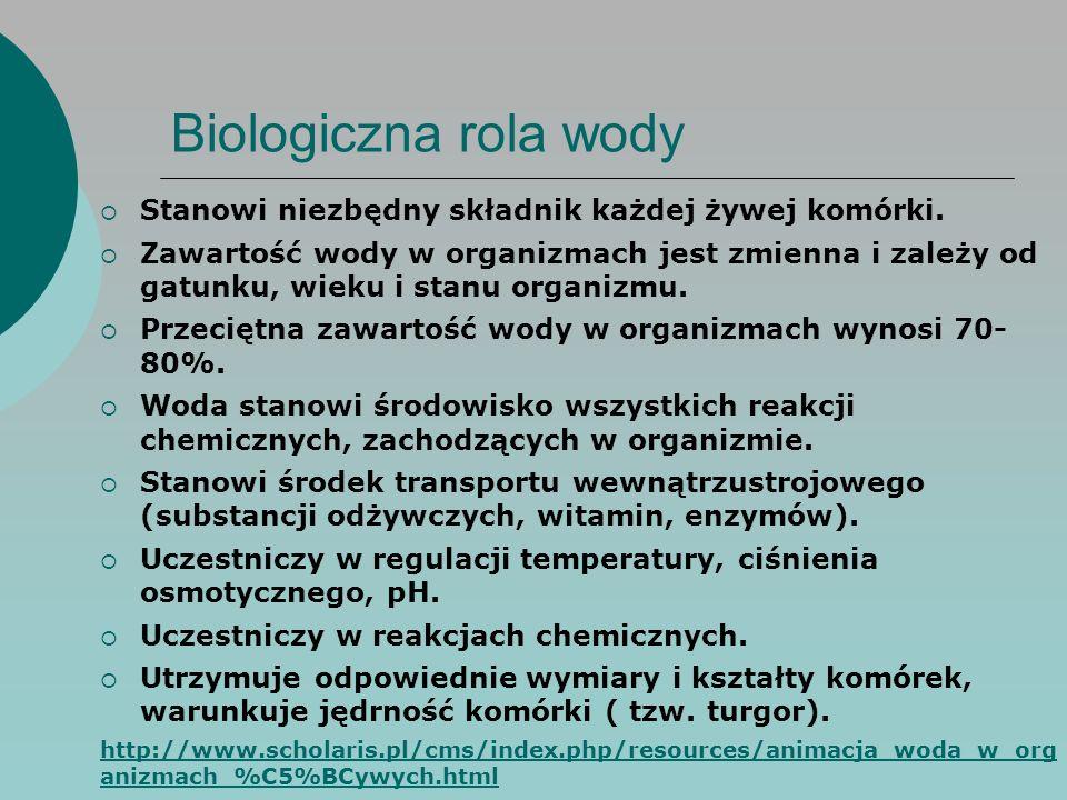 Biologiczna rola wody  Stanowi niezbędny składnik każdej żywej komórki.