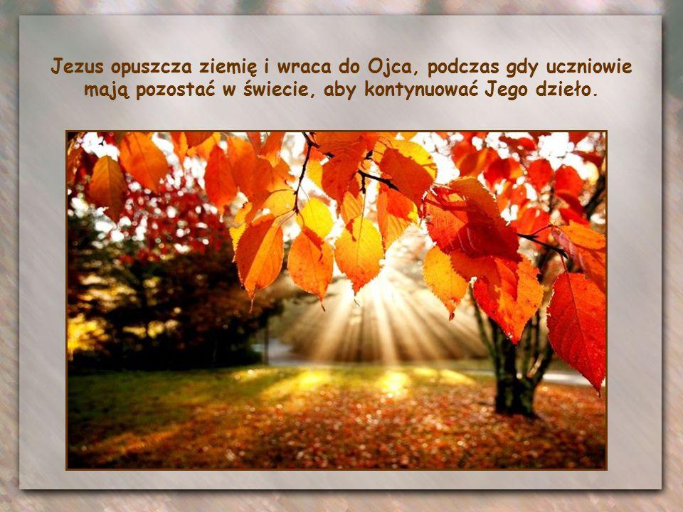 Tymi słowami kończą się mowy pożegnalne, kierowane przez Jezusa do uczniów podczas Ostatniej Wieczerzy, zanim oddany został w ręce tych, którzy wydali