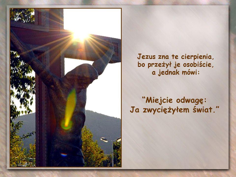 I choć nie posiadamy Jego mocy wewnętrznej, mamy Jego samego, który żyje i walczy razem z nami.
