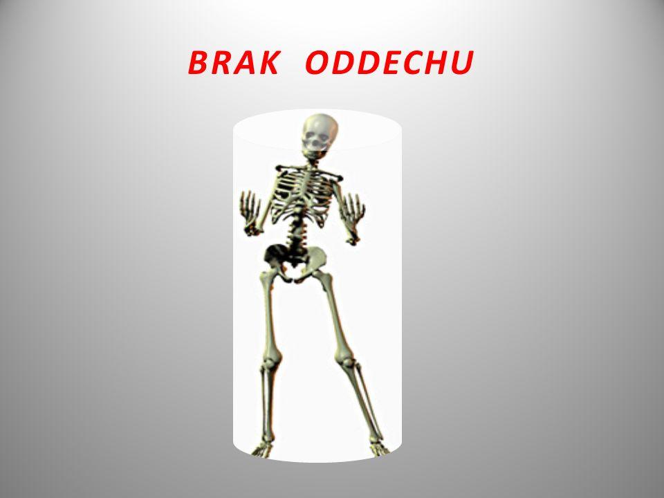 BRAK ODDECHU