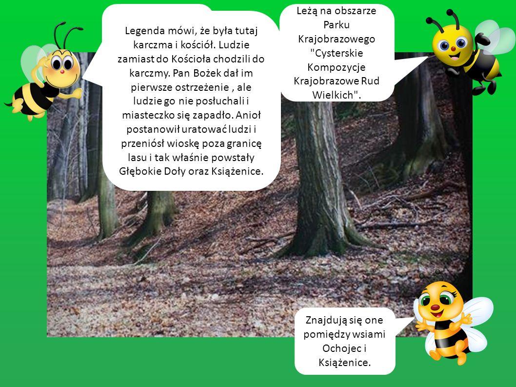 Z zagrodą leśnika wiąże się legenda Huberta.Patrona myśliwych i leśników.