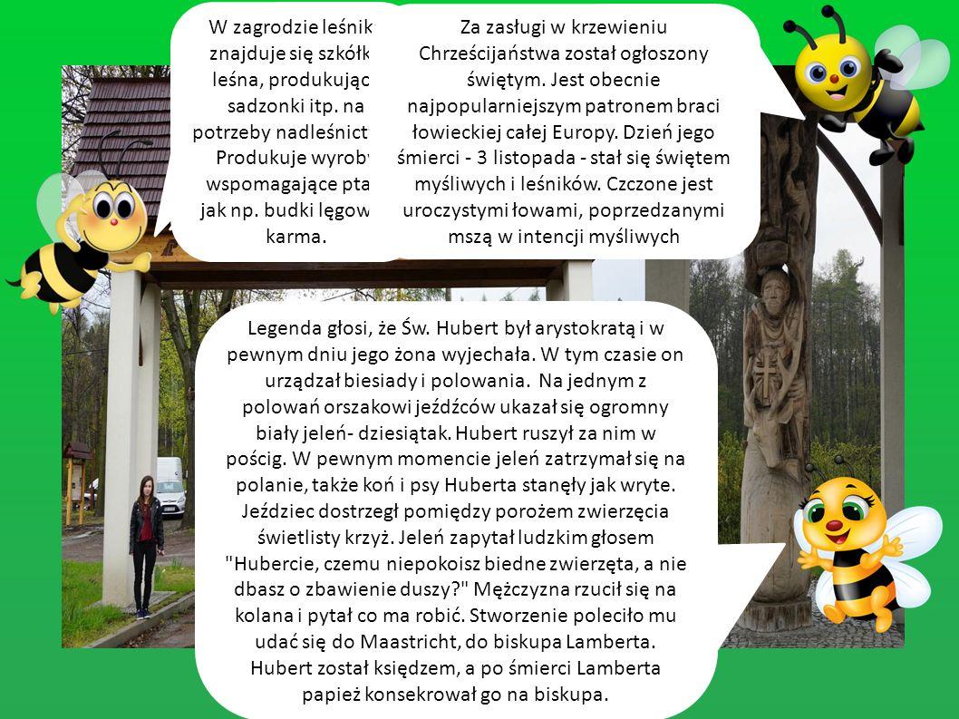 Z zagrodą leśnika wiąże się legenda Huberta. Patrona myśliwych i leśników.