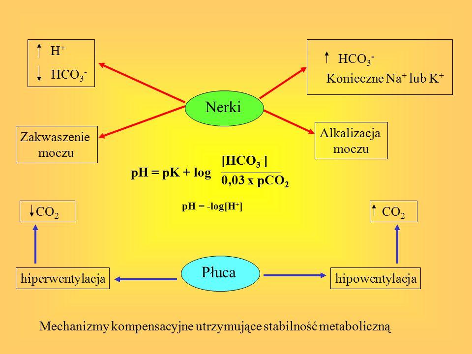 Zasadowica metaboliczna Wzrost zasad buforujących lub utrata silnych kwasów: -Pylorostenoza -Przewlekła biegunka, biegunka chlorkowa -Stosowanie diuretyków: utrata potasu -Jatrogenna Zmniejszenie objętości płynu zewnątrzkomórkowego – wzrost reabsorpcji Na+ i HCO3 w cewce bliższej, w cewce dalszej reabsorpcja Na+ i HCO3 zależna od minelarokortykoidów Leczenie: leczenie przyczyny, stosowanie jonów Cl-