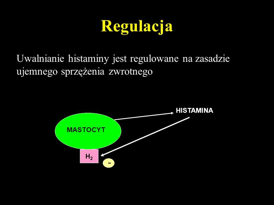 Histamina działanie Mięśnie gładka: –Skurcz oskrzeli –Rozszerzenie naczyń Śródbłonek: zwiększona przepuszczalność Nerwy czuciowe: pobudzenie: –Pokrzywka Płuca: zwiększone wydzielanie prostanoidów Komórki wydzielnicze: zmniejszona lepkość śluzu Zwiększenie wydzielania żołądkowego Neurotransmitter w OUN Reakcja alergiczna