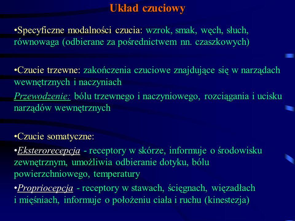 Objawy i najczęstsze przyczyny uszkodzenia dróg czuciowych na różnych poziomach 7/ Uszkodzenie dróg czuciowych w torebce wewnętrznej - połowicze zaburzenia wszystkich rodzajów czucia na przeciwległej połowie ciała Przyczyny: zawał, krwotok, guz mózgu 8/ Uszkodzenie pól czuciowych kory mózgowej - nie ma zaburzeń czucia powierzchniowego, ale chory nie może umiejscowić bodźca, zaburzona jest dyskryminacja i dermoleksja, astereognozja Przyczyny: zawał, krwotok, guz, uraz