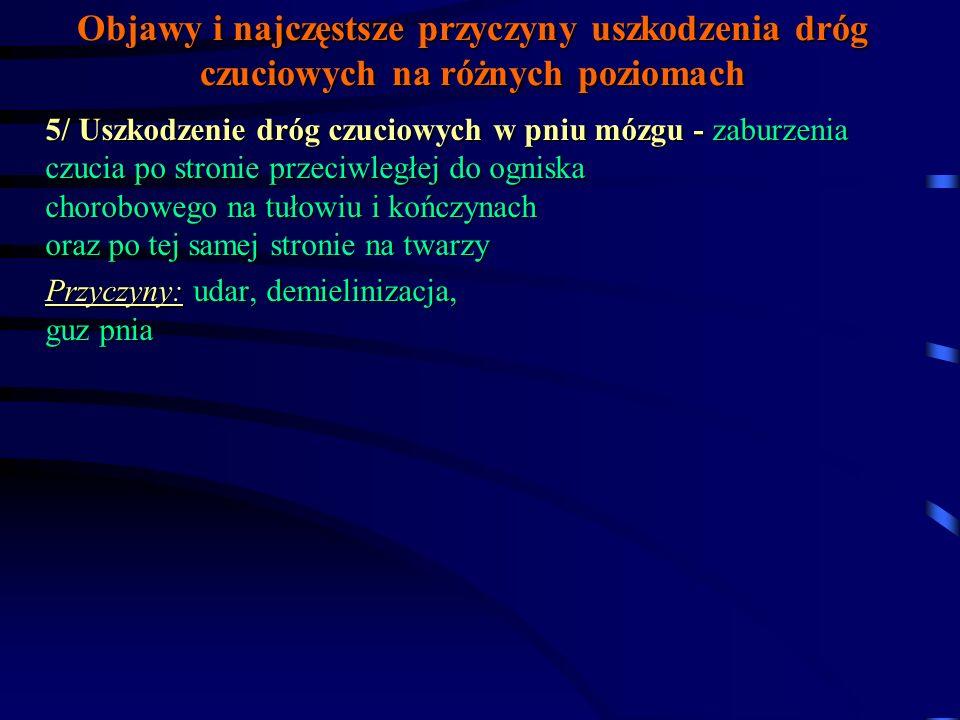 Objawy i najczęstsze przyczyny uszkodzenia dróg czuciowych na różnych poziomach 4/ Uszkodzenie dróg czuciowych rdzenia kręgowego c.d.