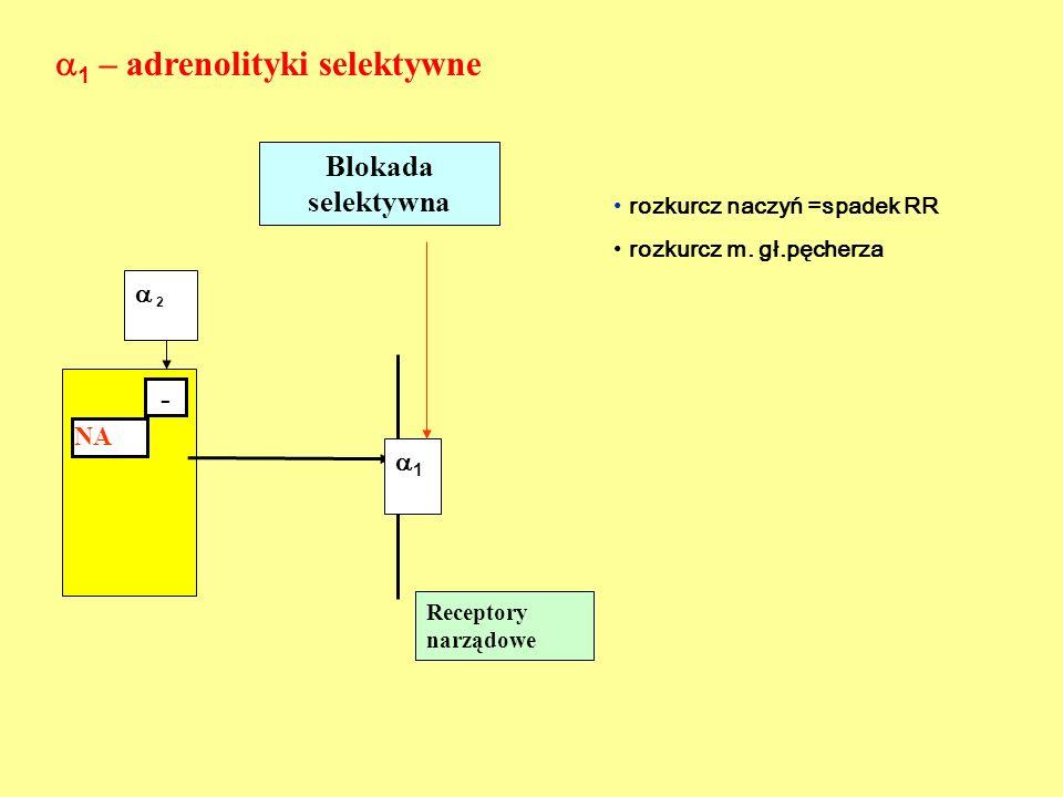1.Prazosynant,nk, 2.Alfuzosynabph,nt 3.Doksazosynant,bph 4.Terazosynabph,nt 5.Trimazosynabph 6.Tamsulozynabph 7.Urapidilnt 8.Indoraminant  1 - ADRENOLITYKI SELEKTYWNE