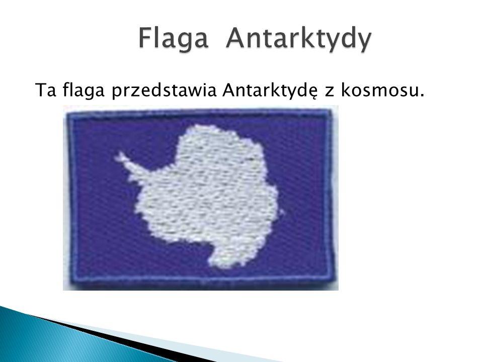 Ta flaga przedstawia Antarktydę z kosmosu.