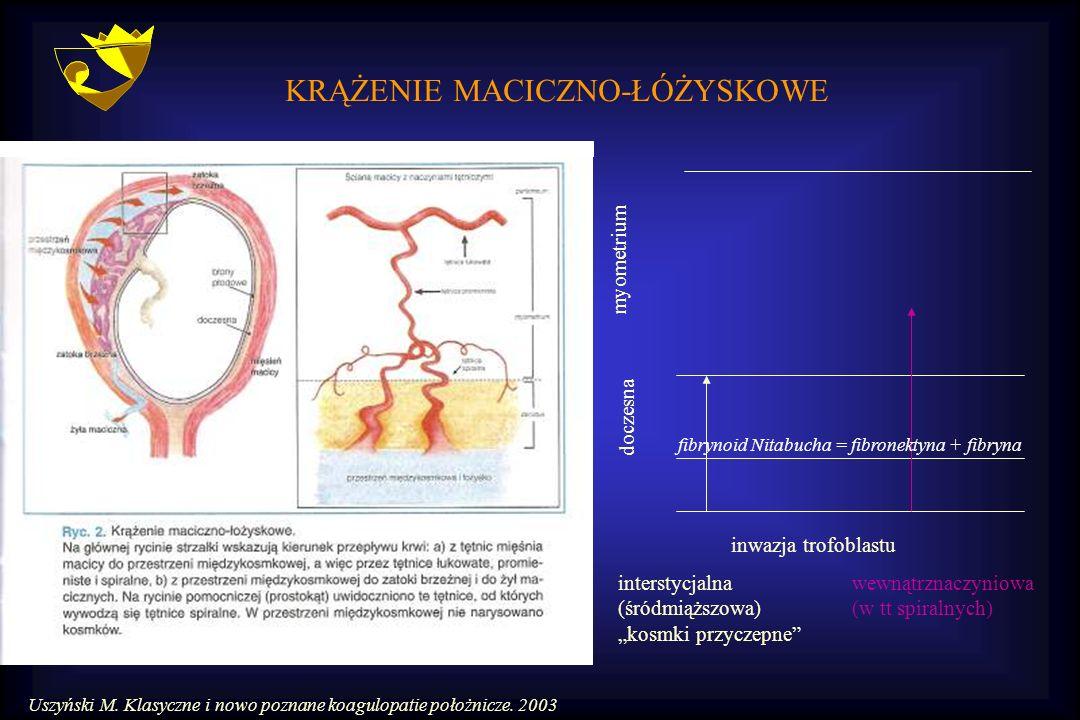 """KRĄŻENIE MACICZNO-ŁÓŻYSKOWE doczesna myometrium interstycjalna (śródmiąższowa) """"kosmki przyczepne"""" wewnątrznaczyniowa (w tt spiralnych) inwazja trofob"""