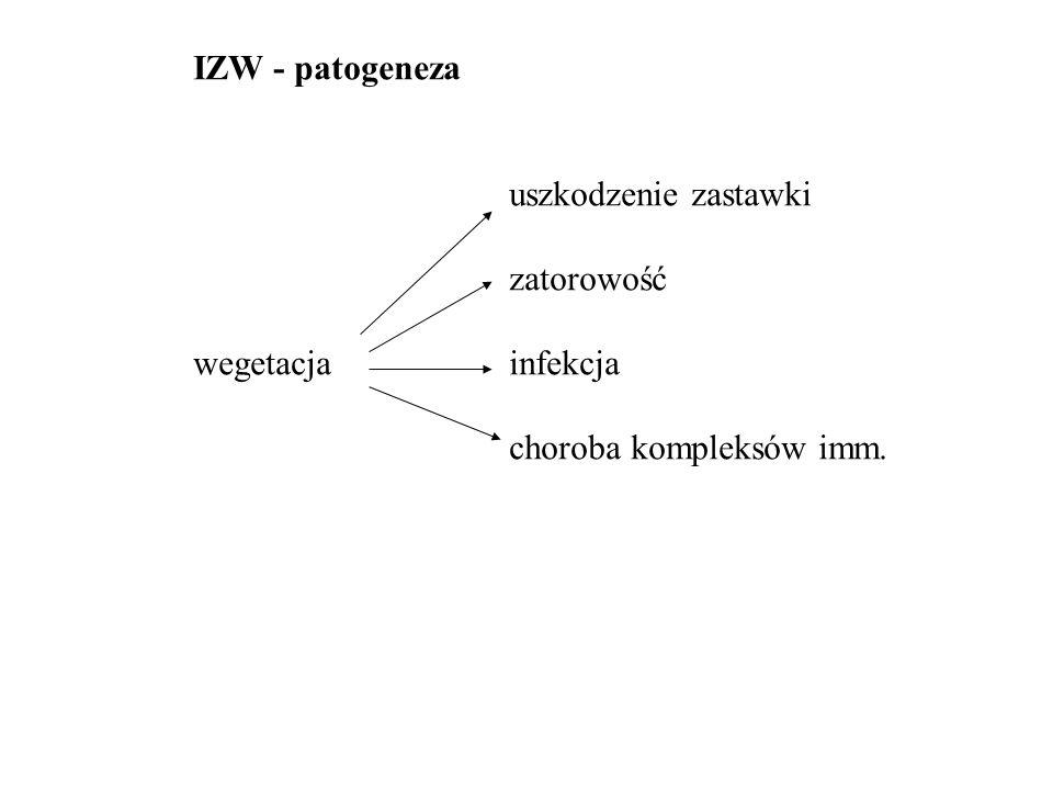 IZW - patogeneza uszkodzenie zastawki zatorowość wegetacjainfekcja choroba kompleksów imm.