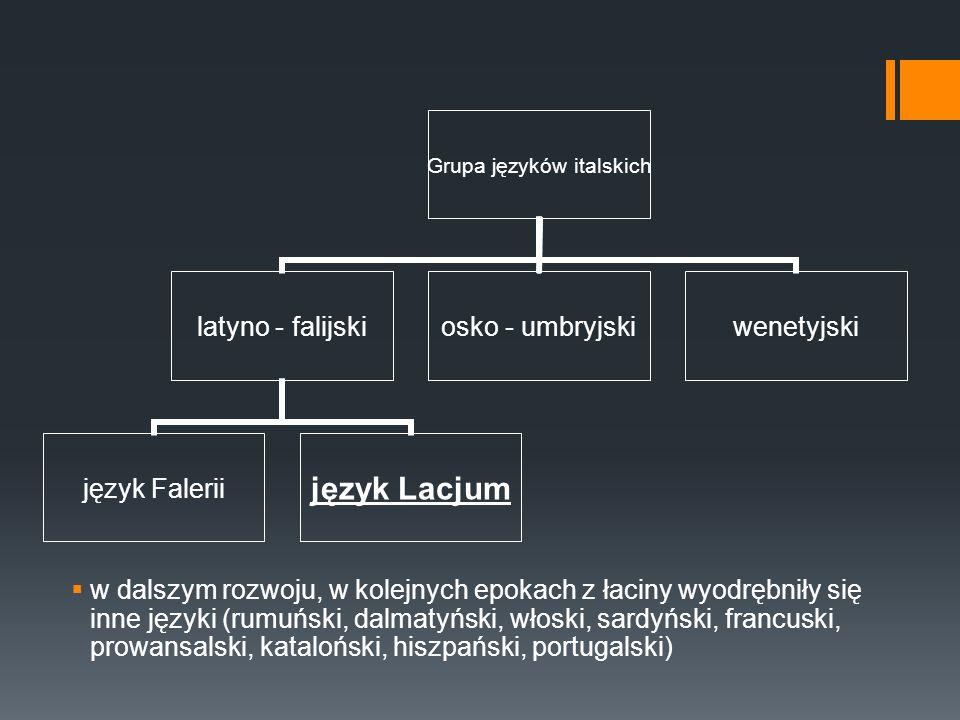 Grupa języków italskich latyno - falijski język Faleriijęzyk Lacjum osko - umbryjski wenetyjski  w dalszym rozwoju, w kolejnych epokach z łaciny wyod