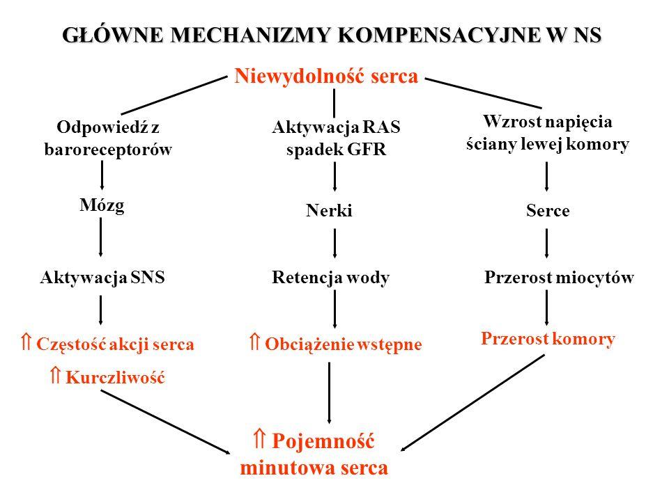 GŁÓWNE MECHANIZMY KOMPENSACYJNE W NS Niewydolność serca Odpowiedź z baroreceptorów Aktywacja RAS spadek GFR Wzrost napięcia ściany lewej komory SerceN